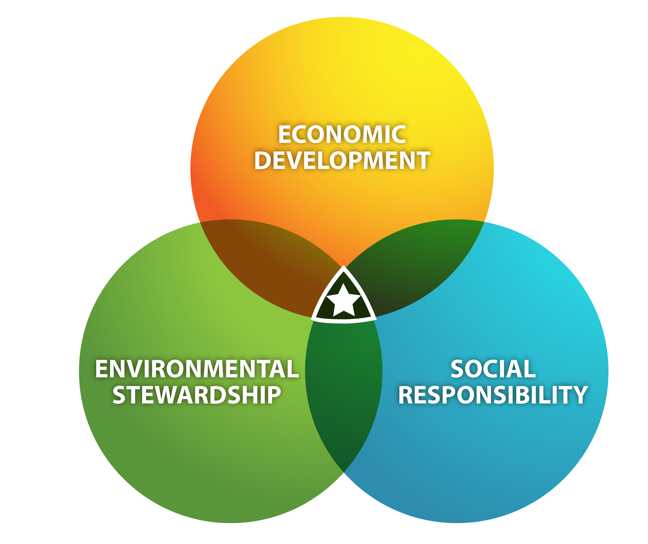 sustainability definition Definition of sustainability in the audioenglishorg dictionary meaning of sustainability what does sustainability mean proper usage and pronunciation (in phonetic transcription) of the word sustainability.